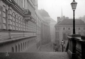 Showers in Vienna by measant