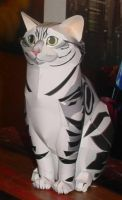 Cat Papercraft by paperart