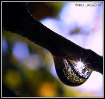 WOULD YOU LIKE A DROP OF AUTUMN? YES, PLEASE! by MarcoLorenzetti