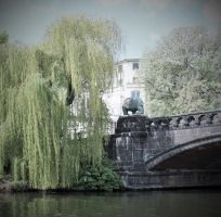the willow and the bear by NaturesMate