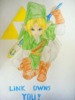 Link owns you by twinkelsparky1