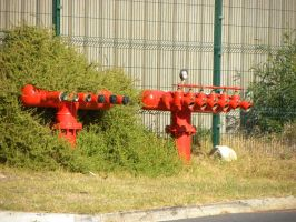 Fire hydrants by RiverKpocc