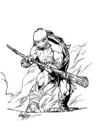 teenage Turtle Ninja Fighter by andrecoelhoart