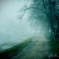 Lost In The Deep Morning III by pelleron