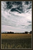 Farmland 2 by McFossey