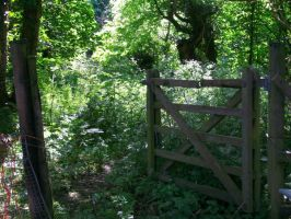 Gate to somewhere by Hatters-Workshop