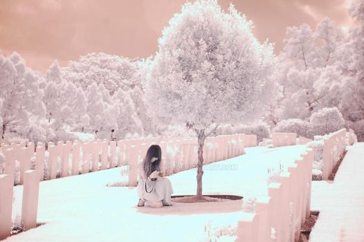 IR photography (5) by zickrawrs