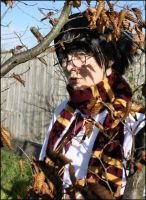 Harry Potter: autumn leaves by LollypopL