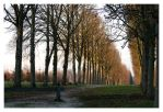 3772 - Versailles by Jay-Co