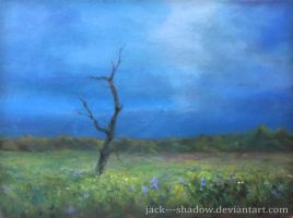 Landscape 1 by Jack---Shadow