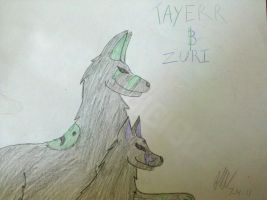 Tayerr and Zuri by That1Fan