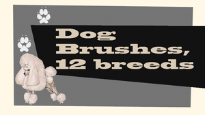 Dog brushes by juanito316ss