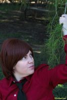 APH Romano: Effing Branch by anthenii-san