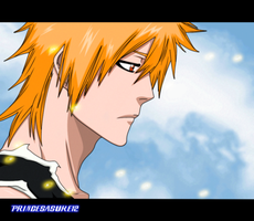 Bleach 422- The Day will Comes by Akira-12
