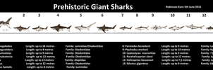 Giant Sharks by Teratophoneus