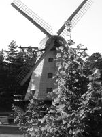 Windmill by coolheart