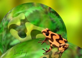 Poison Frog D. Auratus Campana by FauxHead