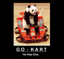 Demotivation: Panda Go-Kart by quicksilver22
