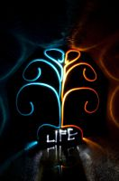 Tree of Life by drtongs