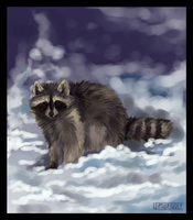 raccoon by HeatherWolf