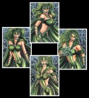 POLARIS PERSONAL SKETCH CARDS 2012 by AHochrein2010