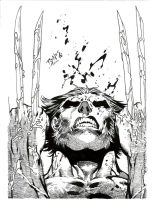 Benes Wolvie inked-finished by thegakrules