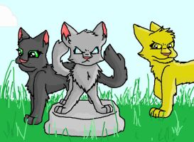 Jaypaw, Lionpaw, and Hollypaw by GingerFlight