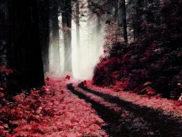Red Forest by shiyen119