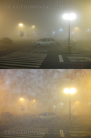 Foggy Night at Safeway by Leathurkatt-TFTiggy