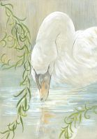 Ugly duckling::Spring again by Rikae