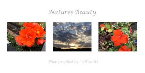Natures Beauty by sigsource