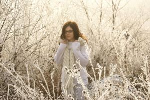 white frost 4 by bellalleb-stock