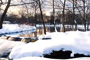 snow at the park by PhotographybyVictor