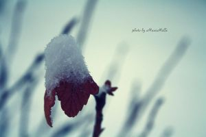 Melancholy. by MauiMelle