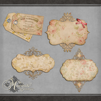 http://th00.deviantart.net/fs70/200H/f/2014/221/0/6/shabby_chic_journal_tags_by_marmitemamie-d7ugkq8.png