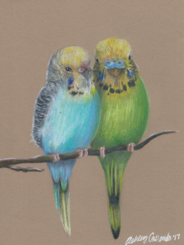 Budgies by Ducks-with-Crayons