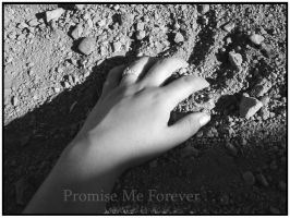 Promise Me Forever by SharysAogail