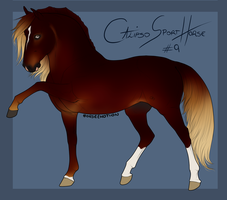Calipso Import Horse #9 by BH-Stables