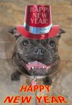 Happy New Year 2015 by masimage