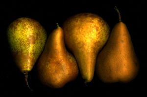 Pears by mg-45