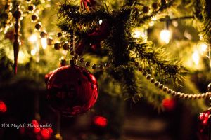 Christmas dream by HenriqueAMagioli