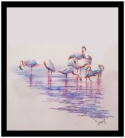 Flamingo by Obs3ss1On