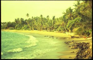 postcards from the island: I by zosiaq