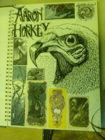 Aaron Horkey artist sheet by Xanthiya
