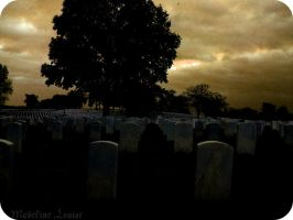 War Casualties by MaddLouise