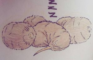 Sleeping Kiwi by KingSHovka
