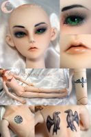 BJD Face Up and Body Blush - Impldoll Xavier by Izabeth
