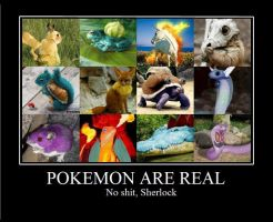 POKEMON ARE REAL by indynelissen