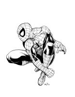 the Amazing Spider-Man by judsonwilkerson