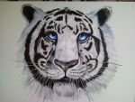 Siberian Tiger Commission by Unmei-Wo-Hayamete